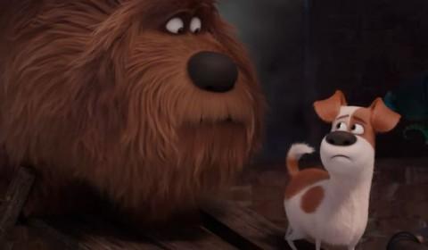 The-Secret-Life-of-Pets-Trailer-Duke-Max